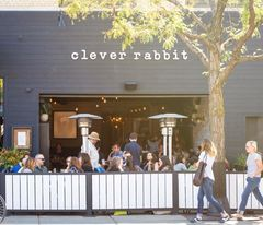 A photo of Clever Rabbit