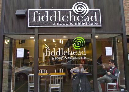 A photo of Fiddlehead
