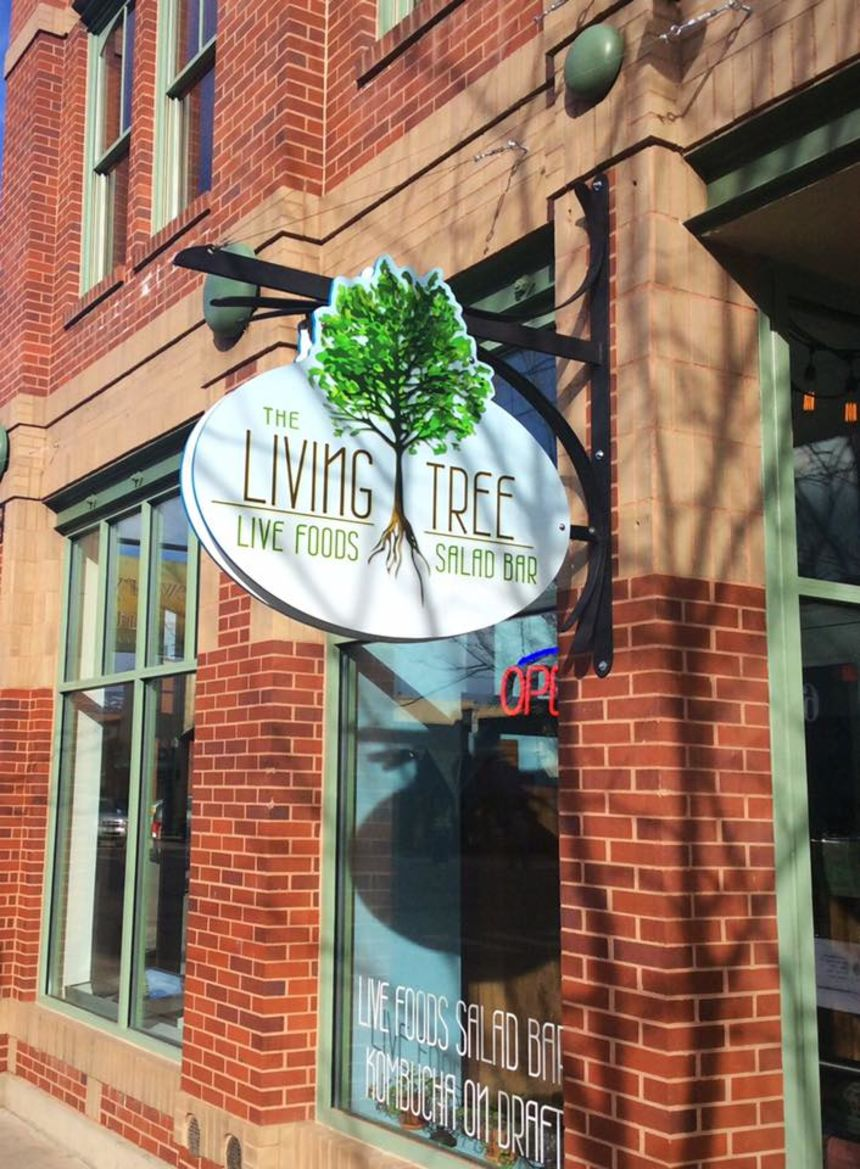 The Living Tree Live Foods Salad Bar
