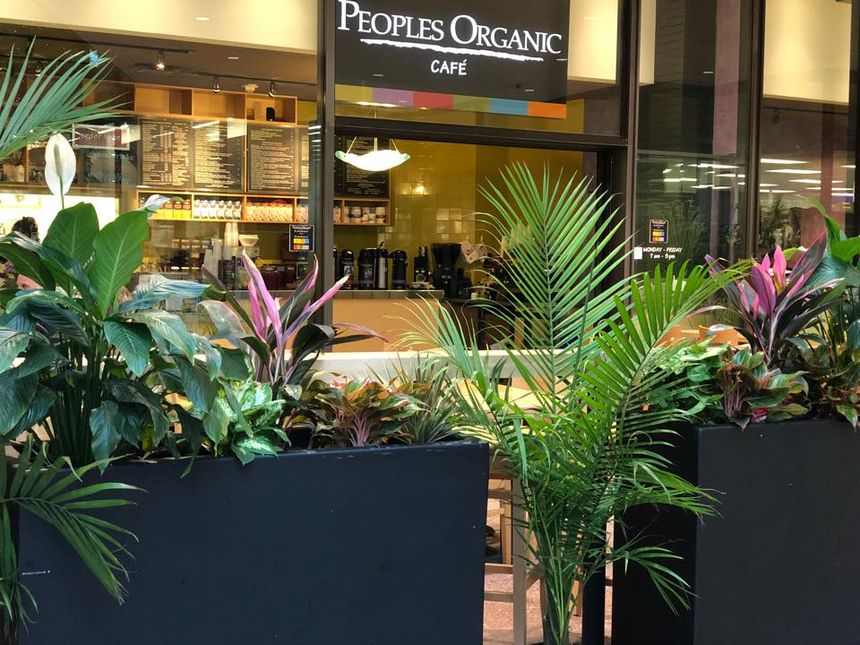 A photo of People's Organic Café, IDS Center