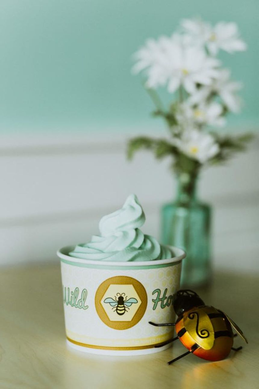 Wild Honey Frozen Yogurt