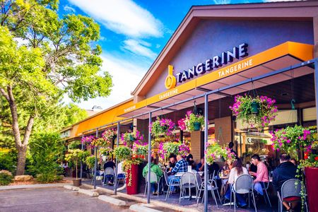 A photo of Tangerine