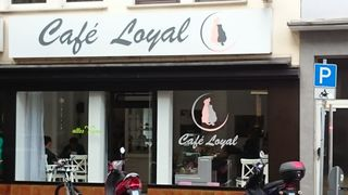 A photo of Café Loyal