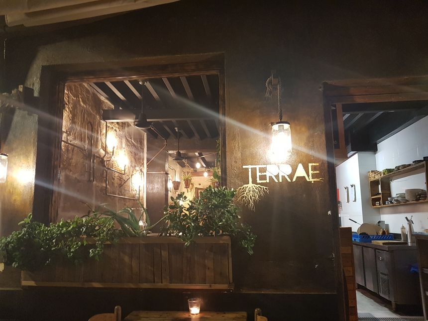 A photo of Terrae