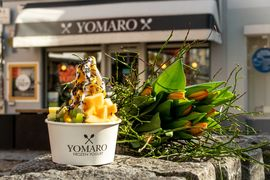 A photo of Yomaro, Benrath